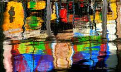 Water reflections gone wild (Art Rock (Hennie)) Tags: wild abstract topf25 water netherlands abstraction almere waterreflection kemphaan explored fullcolour artrock2006 sigmadc18200 canoneos400d platinumheartaward hennieschaper hennieschapertop100