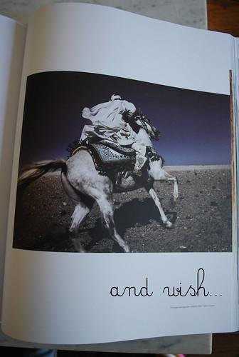 horsebook6