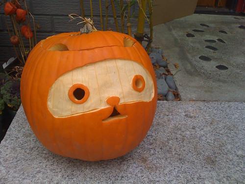 Japanese pumpkin raccoon