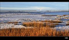 Watt (Monika Ostermann) Tags: winter sea snow ice frozen northsea nordsee watt potofgold mywinners 100commentgroup creattivit wattlandschaft monikaostermann