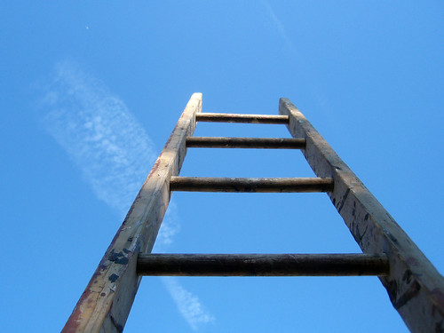 333/365 The ladder of life is full of splinters...