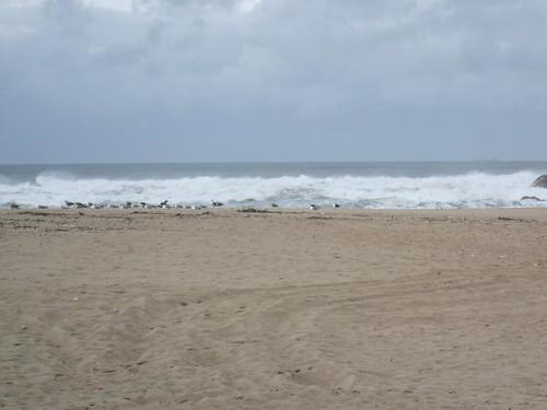 praia de inverno