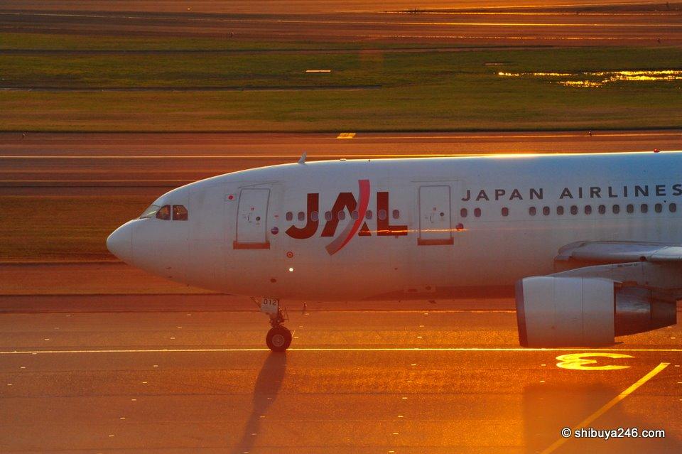 JAL, Haneda Airport