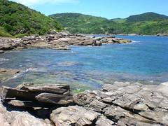 Foca de novo (Lia Porto) Tags: búzios praiadafoca