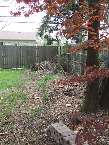 Brush pile before