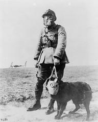 Gas Masks are (Still) Creepy (KurtClark) Tags: world dog 1 war gas mustard gasmask ww1 worldwar1 trenches