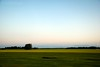 Driving on a summer night (-Camilla) Tags: summer sky tree field barn landscape evening countryside driving sweden farmland motionblur rapeseed nikond80 nikkor18135mm powmerantusenord yhidvegi