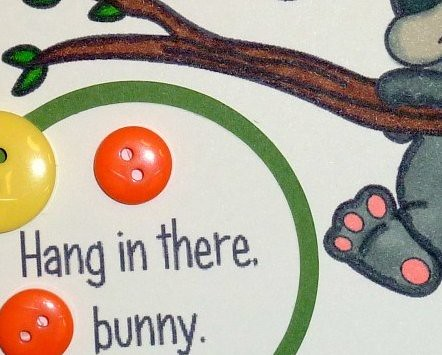 Hang in there Bunny
