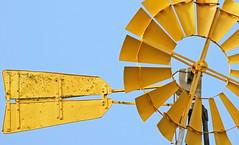 """Sun Catcher"" (fantommst) Tags: newzealand game windmill nz hero winner northisland lichen wellow matakohe flickrchallengewinner thechallengefactory matahoke trueblueaussieandkiwichallengegroup"