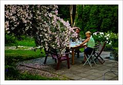 MOL_0046 (Anders Mohlin) Tags: sverige sommar gnesta srmland lillasigtuna