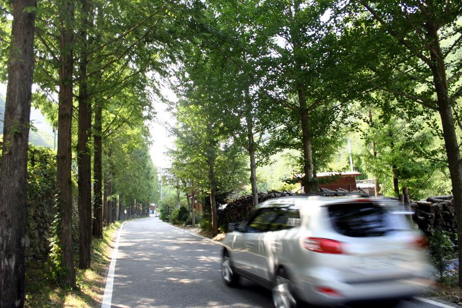 Jangtaesan provinvial park(1)