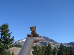 Travel Bear on the Summit
