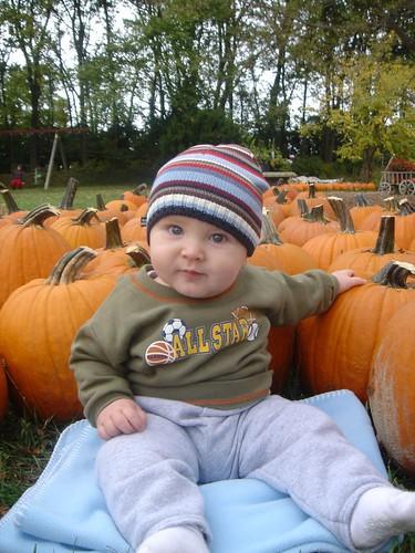 pumpkin one year old