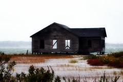The Shack (JessDd) Tags: storm rain peace gloom shack marsh floods