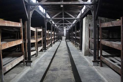 Auschwitz - 50