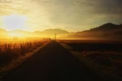 Misty sunrise (waltersoluh) Tags: road sky cloud mist fog sunrise landscape rs fpg mywinners platinumphoto theunforgettablepictures alwaysexc colorsofthesoul artistictreasurechest redmatrix magicunicornverybest adriënnesmagicalmoments
