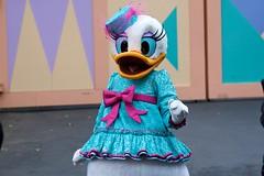 Daisy Duck (Rare)