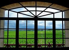 Window View of Vineyards at Chateau Pontet-Canet (Dave Aragona) Tags: france bordeaux vineyards medoc pauillac pontetcanet