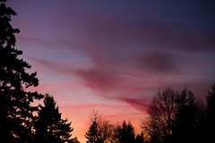 Cirrus and Sunset (absencesix) Tags: sunset sky usa nature weather clouds landscape washington december unitedstates dusk iso400 noflash redmond northamerica 2009 ef2470mmf28lusm locations microsoftcampus manualmode 68mm timeofday redwestcampus camera:make=canon geo:state=washington exif:make=canon exif:iso_speed=400 exif:focal_length=68mm geo:city=redmond canoneos7d canon7d redwestc hascameratype selfrating2stars december112009 1100secatf40 microsoftnorthcampus geo:countrys=usa exif:lens=ef2470mmf28lusm camera:model=canoneos7d exif:model=canoneos7d exif:aperture=ƒ40 subjectdistanceunknown redmondwashingtonusa geo:lon=12214113182391 geo:lat=47657372708027 47°3927n122°828w