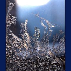 ~~ delicate ~~ (rotraud_71) Tags: winter frommywindow eisblumen mwinners diamondclassphotographer flickrdiamond vanagram frostingpatterns zauberhafteformen