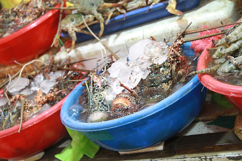 Fish Market - Langostas