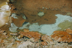 Palm Pool (10 August 2011) 5 (James St. John) Tags: hot pool spring basin springs yellowstone wyoming geology geyser porcelain norris geysers hot spring springs basin porcelain norris basinpalmpoolpalm