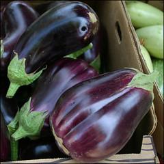Eggplant (La Grande Farmers' Market) Tags: oregon la grande farmers market tomatoes 97850 lagrandefarmersmarket upcoming:event=5692124 upcoming:event=5692153