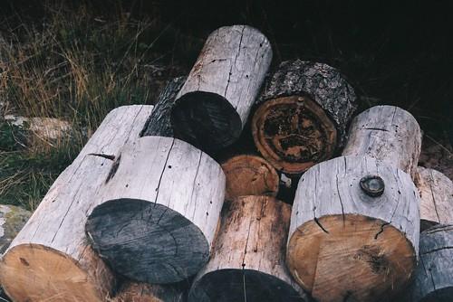 Wood pile.