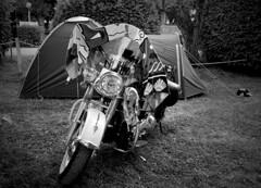 tent and bike (Nordlichter4) Tags: bike tent harley trailer toscana softail etna zelt sizilien eglide tna