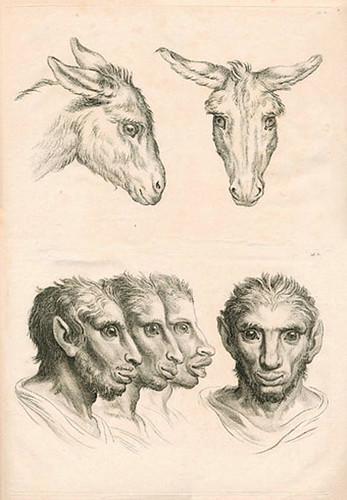 016-Le Système de Lebrun sur la Physionomie 1806