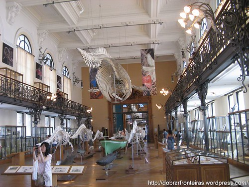 Museu dos Oceanos, Mónaco