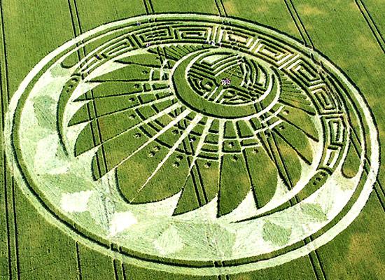 crop-circles-field-photo-27