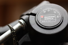Manfrotto (Little Bit Good) Tags: canon eos manfrotto 50d snaketail 808rc4