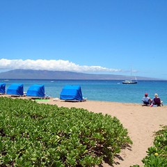 A cloudless sky above makes for lovely days at your favorite Maui beach.