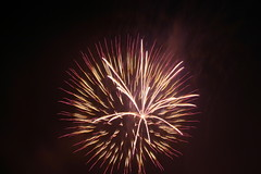342_4241 (wswarrior75) Tags: fireworks july4 independanceday olneyil
