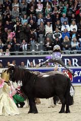 Oslo Horse Show 2009 (Ninahei) Tags: show horse oslo canon eos arena anders telenor fornebu 400d canoneos400d lefdal haraldrnneberg telenorarena fornebuarena oslohorseshow2009 anderslefdal lefdalsrideskole lefdals rideskoe