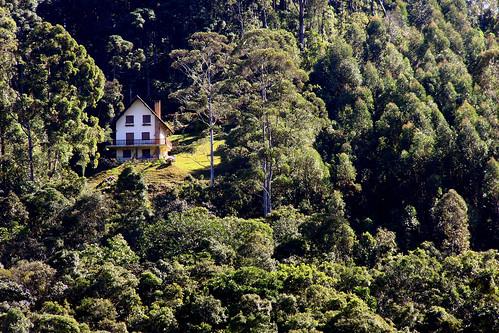 chalet forest green hill house landscape mountain São Francisco Xavier slope SP