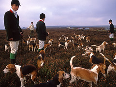 Ampleforth beagles. (Mark Draisey Photography) Tags: school college education uniform posh schooluniform beagles boardingschool beagling privateschool publicschool schoolboys upperclass ampleforth independentschool privileged ampleforthcollege britisheducation ampleforthcollegebeagles britishpublicschools