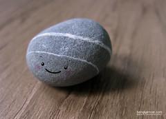 pebble (bengi gencer) Tags: pebble