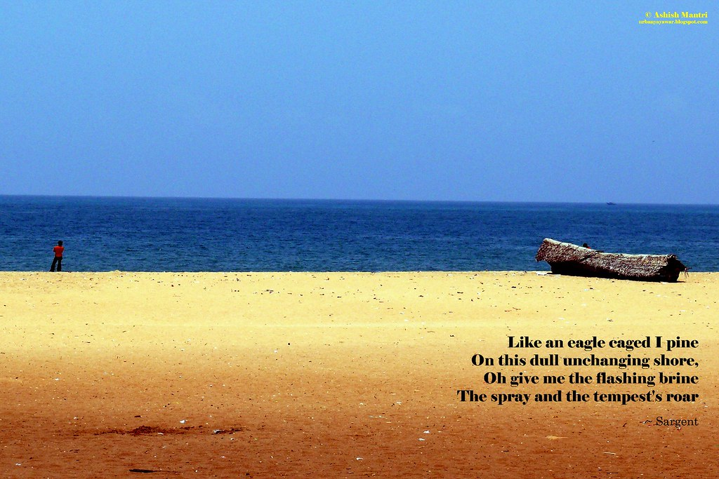 P1230909 Kollam Beach Poster 12x8 Like an Eagle