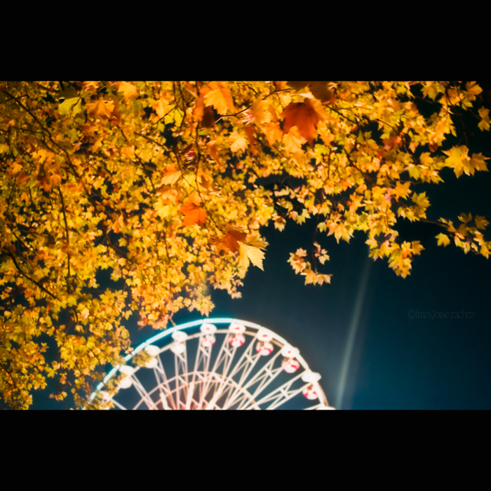 Autumn Ferris Wheel