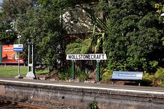 Wollstonecraft, 125/365