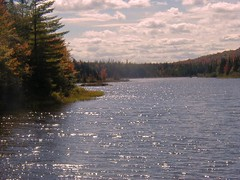 A Close Up of Small Islands in Wilderness Pond Cypress River Preserve Adirondacks NY (RickMagee1) Tags: forrest parks adirondacks mountainstreams fallfoilage wildernessponds