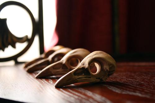 polymer clay bird skulls03