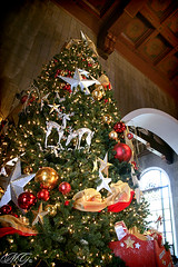 Los Angeles Union Station 3 (Marcie Gonzalez) Tags: california county christmas trip trees winter light holiday building tree history station architecture train canon buildings festive season stars photography lights star la daylight los holidays downtown day arch ride angeles union decoration structures landmarks sunny trains landmark visit structure ceiling architectural celebration southern socal ornament cal ornaments transportation destination historical tall arrival gonzalez uni