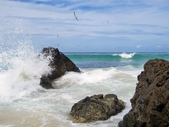 Byron Bay Waves Crashing Harad