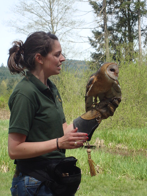 Pacific Northwest Raptors