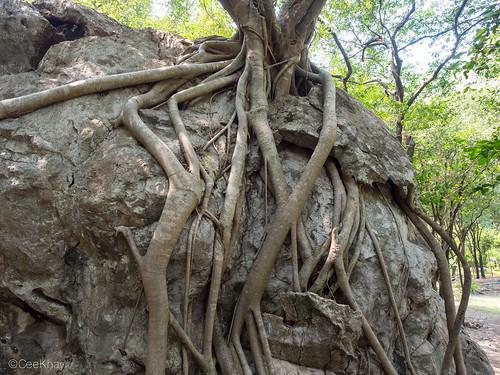 Khao Nang Panthurat Forest Park