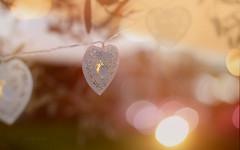 Sunset on my Heart... (KissThePixel) Tags: sunset landscape light lights sunlight shimmer reflection bokeh realbokeh softbokeh heart love romance romantic artistic artist art aperture sun sunbathed stringoflove stringoflights beautiful stilllife stilllifephotography sundown monday macro macroeveryday macroanyday nikondf sigma valentine garden