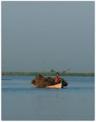 panjnad ,pakistan (TARIQ HAMEED SULEMANI) Tags: pakistan river boat culture punjab tariq satul panjnad concordians sulemani satlujriver